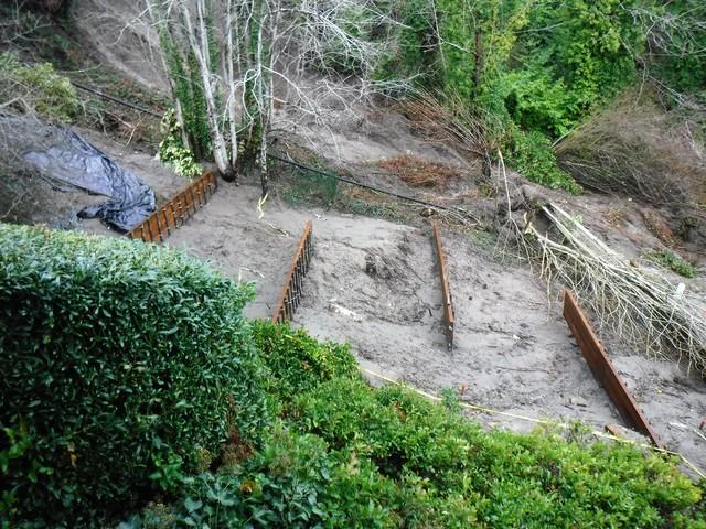 Looking down at the mudslide area, from the neighbor's yard above, after Matvey installed several retaining walls.