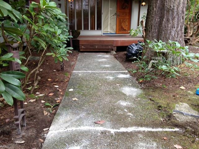 concrete-leveling-after-bellevue