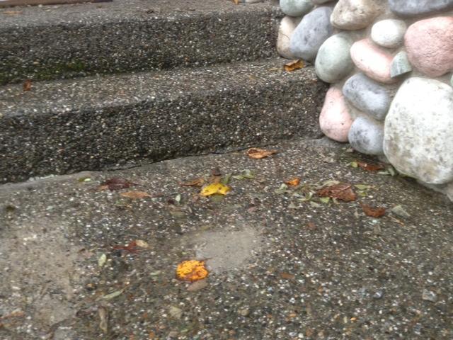 concrete-leveling-steps-after-lynnwood