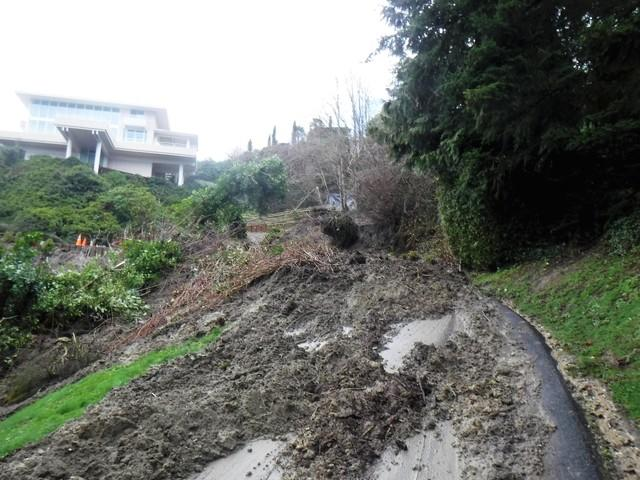 The driveway to this home was completely blocked by a hillside that gave way. Trees, earth, debris were the result of heavy rainfall and not enough drainage.
