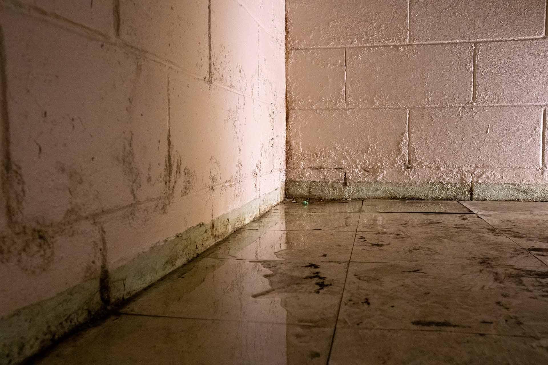 water on floor in basement